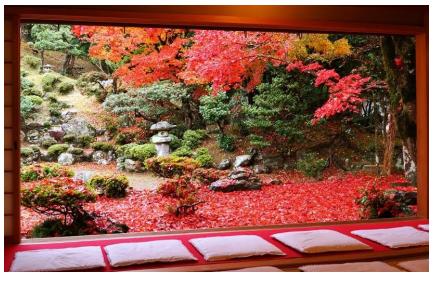 タイ人が選ぶ日本の秋の絶景地、1位は滋賀の清瀧寺